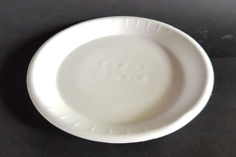 Plastic plate big shallow
