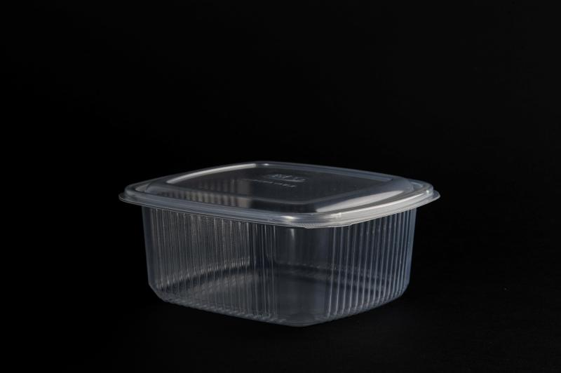 Dishes with a fixed lid PP (up to 120°)