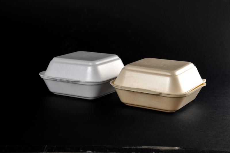 Polystyrene container with a lid(menu box) HB 6