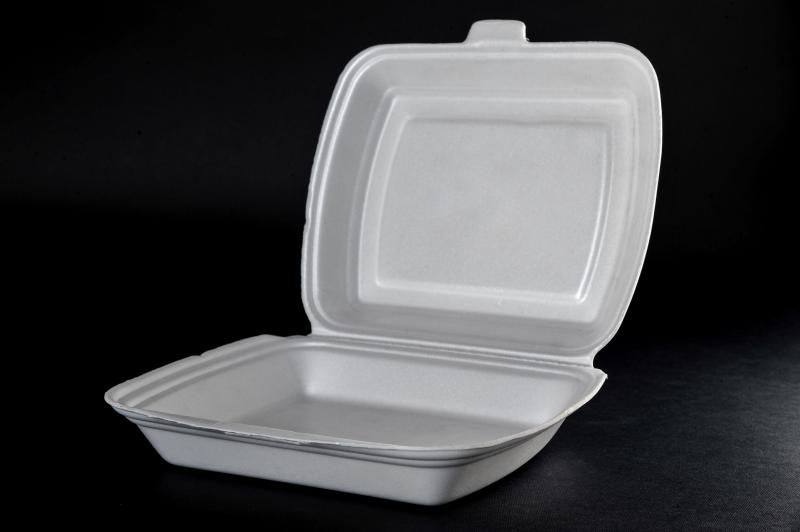 Polystyrene container with a lid(menu box) MB 1